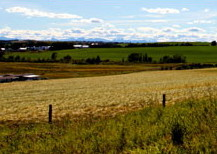 Beautiful scenery around the farmland of rural Alberta near Cremona and Water Valley.